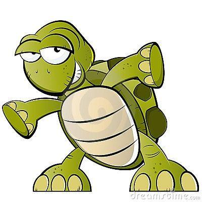 Les tortues respirent-elles par leur fond!
