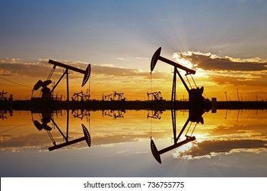 Si no compras petroleo eres tonto